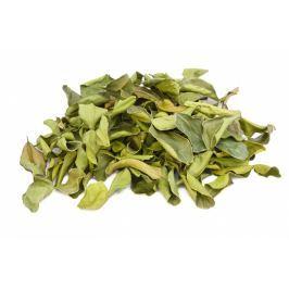 Limetové listy sušené, sáček