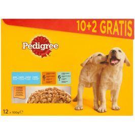 Pedigree Junior Kuřecí a krůtí maso ve šťávě kompletní krmivo pro rostoucí psy a štěňata 12x100g