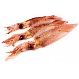 Kalamáry 9-13cm