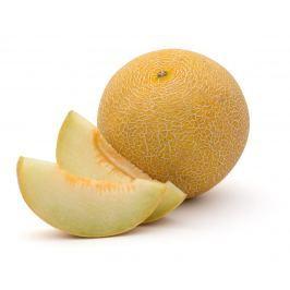 Meloun cukrový Galia 1ks