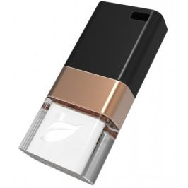 Leef USB 32GB Ice Copper 3.0 black