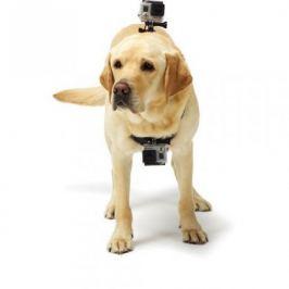 Popruh NICEBOY pro upevnění na psa