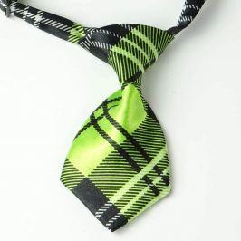 Černo-zelená károvaná kravata pro psa