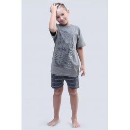 Chlapecké pyžamo Live Untamed šedé